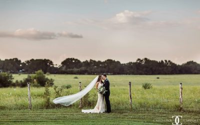 Brittany & Sean's Stonehouse Villa Wedding